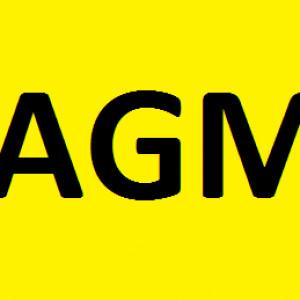 Merton FC AGM – 31.07.2019